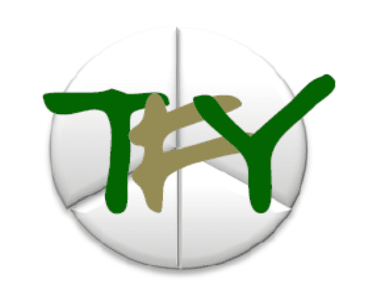 Team For Youth Logo